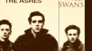 Watch Wild Swans Bringing Home The Ashes video