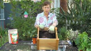 How to Plant Cucumbers in Mounds : Garden Space