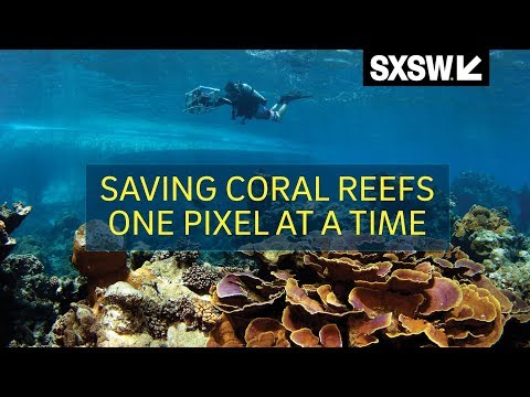 SXSW Panel: Saving Coral Reefs One Pixel at a Time