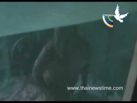 บุกจับสาวใหญ่เจ้ามือหวยใต้ดิน เจอพระดังนอนด้วยคามุ้ง จับสึกกลางดึก