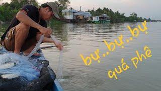 Bự..bự..bự... ước gì có đó. Chiều lên sông thả lưới gỡ cá đả tay   Săn bắt SÓC TRĂNG  