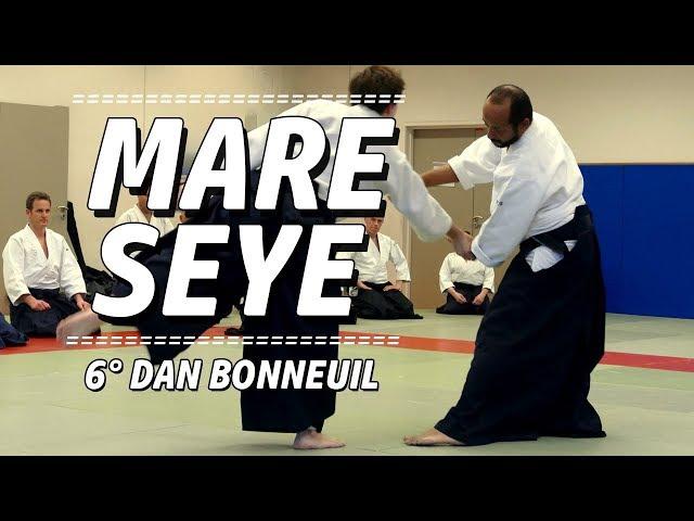 Mare Seye 6°dan Aïkido dojo Pascal Norbelly le 6 avril 2018