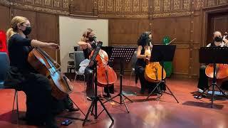 Cello Paradiso - Yeldeğirmeni Sanat Konseri 21.11.2020