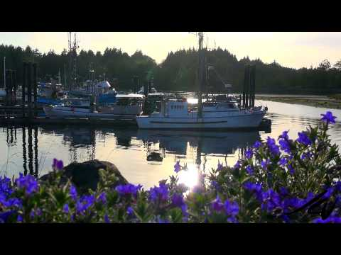 Ucluelet, Vancouver Island  -  so beautiful you may not want to leave  - YouTube