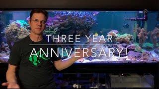 3 Year Anniversary of my reef thumbnail