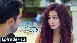 Mohabbat Na Kariyo - Episode 12 || English Subtitles || 13th Dec 2019 - HAR PAL GEO