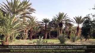 Capsule didactique 3 - version arabe sous-titrée français et anglais