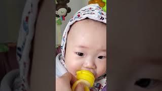 아기 과일먹기