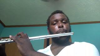 Megalovania(flute cover)