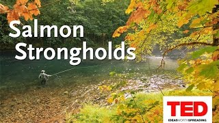 TEDx Talk: Salmon Strongholds