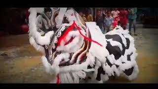 Intip !! Tari Barongsai (Barongseng) Sanggar Seni Lestari Budaya Bangsa (L-Baba)
