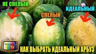 видео Лайфхак: как выбрать самый спелый и сладкий арбуз