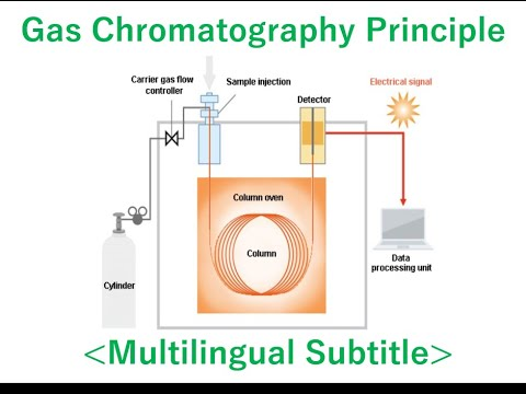 Download What is the Gas Chromatograph? [Multilingual Subtitle]