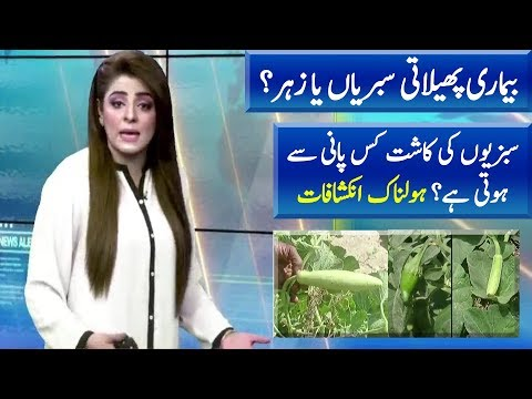 Poisonous Vegetables & Water in Karachi | News Extra | Neo News