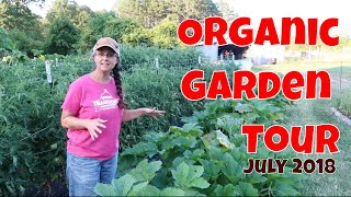 the-good-the-bad-and-the-ugly-of-our-garden-july-organic-garden-tour