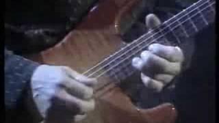 David Gilmour - Comfortably Numb (rare version)