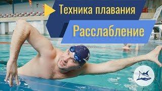 видео: Как научиться плавать расслабленным кролем? 3 лучших упражнения