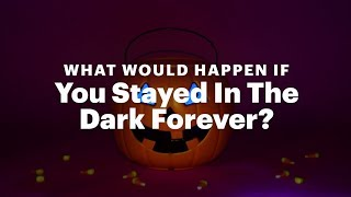 What Would Happen If You Stayed In The Dark Forever?