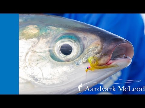 How To Catch A Milkfish On Fly