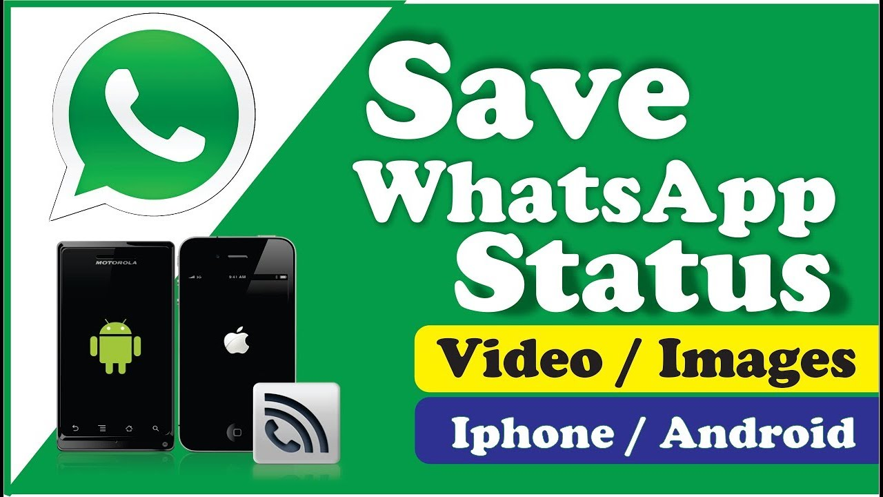 Download Whatsapp Status Video Image Without Root Iphone Android