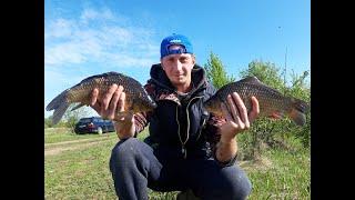 Рыбалка на ЛИНЯ И КАРАСЯ в Беларуси..Природа класс!!!! #рыбалка #карась #линь
