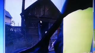 В Усть-Куте полицейские застрелили медведя