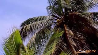 видео Экваториальная Гвинея
