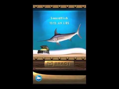 My Flick Fishing Records