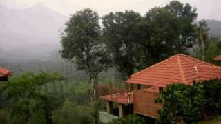 wayanad planet green resorts