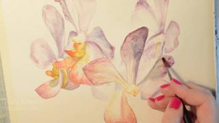 Speed Paint: Orchid Watercolour