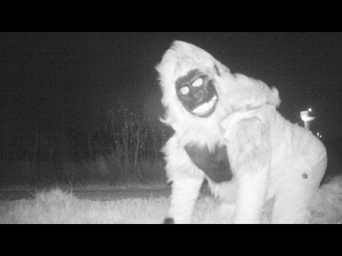 Duo Prank Police Who Were Looking For Mountain Lions By Dressing Up As Animals