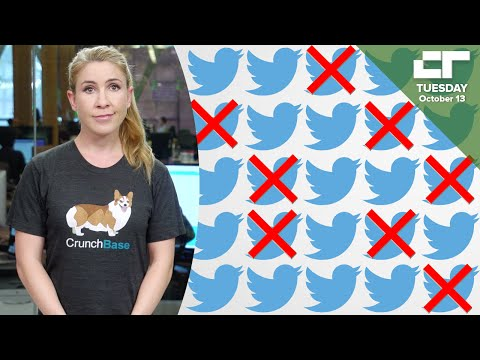 Twitter Lays off 8% of Workforce | Crunch Report