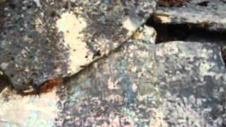 видео По следам экспедиции Рериха