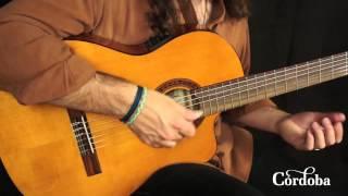 Cordoba Guitars - C5 CET Thinbody Nylon String Guitar