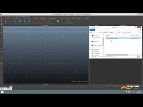 RealFlow 2014 Graphs