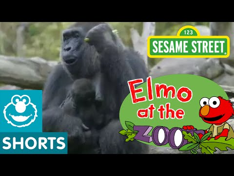 Sesame Street: Elmo Visits the Zoo (Elmo at the Zoo #1)