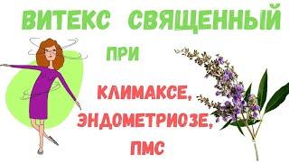Витекс священный (Авраамове дерево) при климаксе, эндометриозе, ПМС