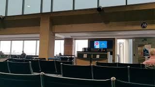 Ni vojaĝis el Kansas City al Bengaluru (Esperanto 🔸 Rachel's Conlang Channel)