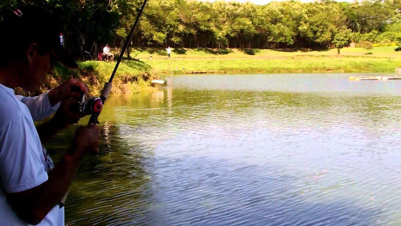 Pesqueiro santa anast cia equipe fishing friends belo for Elias v fishing