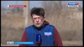 В Астрахани расстреляли двух полицейских, прибывших на место ДТП. Видео