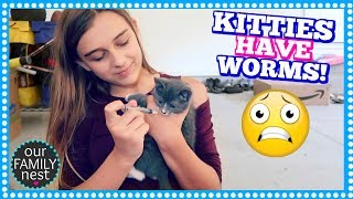 OUR KITTENS HAVE WORMS & HAVE TO TAKE MEDICINE!
