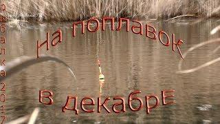 рыбалка в декабре на поплавок по открытой воде
