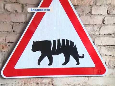 Необычные дорожные знаки представил публике художник Ашот Бабыкин