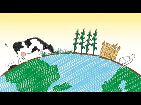 MOOC Systems Thinking and Environmental Sustainability | WUR