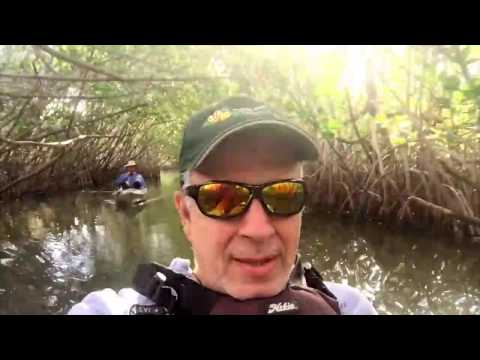 Kayaking in Banana River Lagoon, Cocoa Beach, Fl
