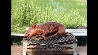 友達と豚の丸焼き。