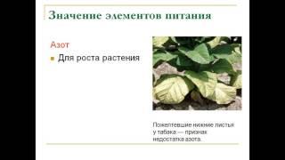 Презентация минеральное питание растений