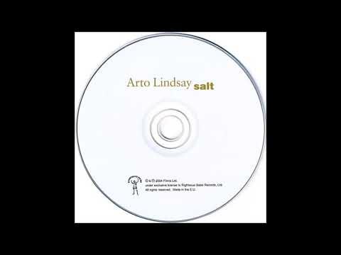 Arto Lindsay –5. Into Shade (Salt, 2004)