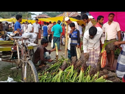 Biggest Village Kacha Bazar | Fresh Vegetables Market In Bangladeshi Local Village 2017