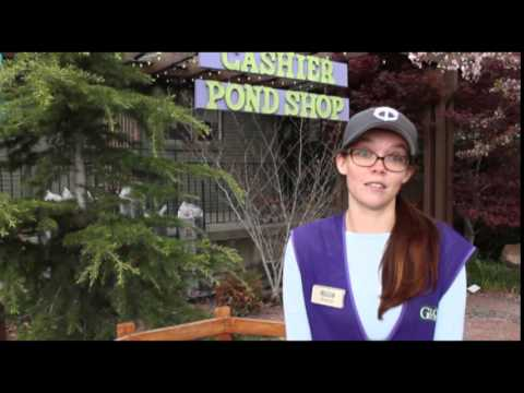 Meet Stacie Glover Nursery Head Cashier